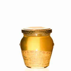 Miele di acacia Apicoltura il Pino