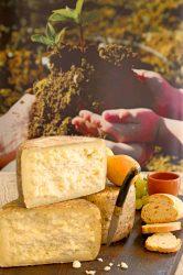 Caprone formaggio di capra stagionato