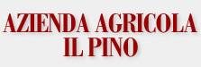 az-agricola-il-pino