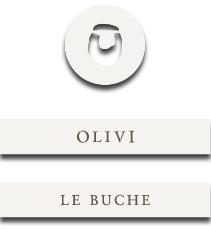 canteine olivi logo