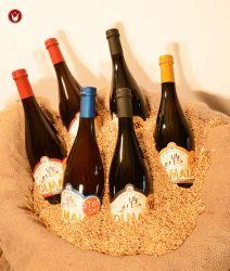 6 bottiglie l'Olmaia
