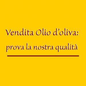 Vendita Olio di Oliva Extravergine